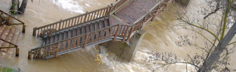 ¿Cubre el seguro los daños causados por la lluvia?